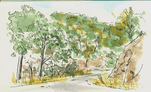 Dibujo de una carretera pequeña entre árboles