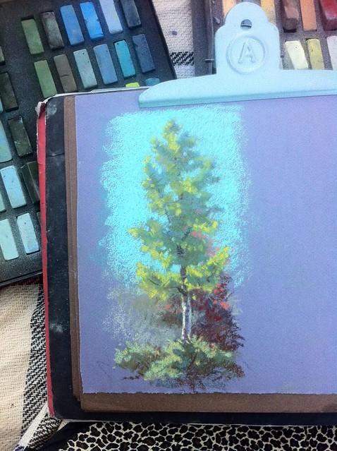 Lundman_treestudy1_PaloAlto