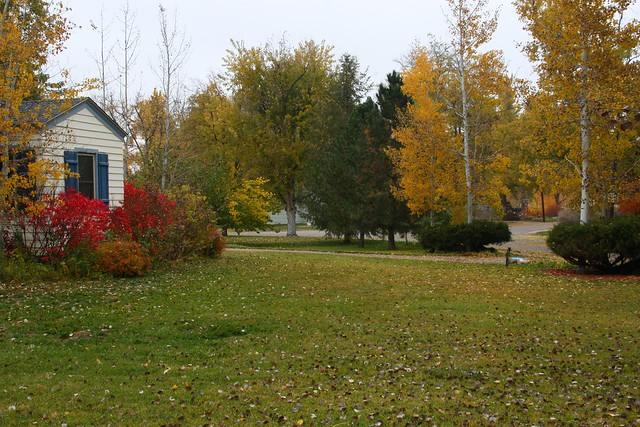 Front Yard to Northeast