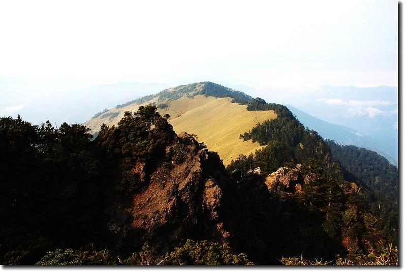 玉山南峰西稜東側草原坡 4