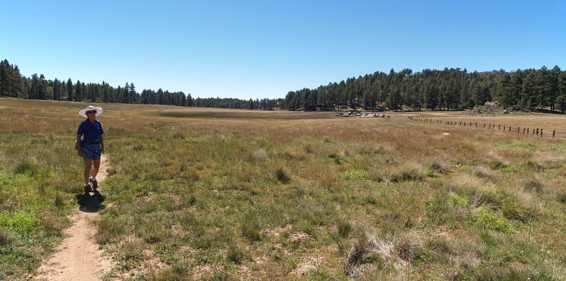 Hiking through El Prado Meadow toward now-dry Little Laguna Lake