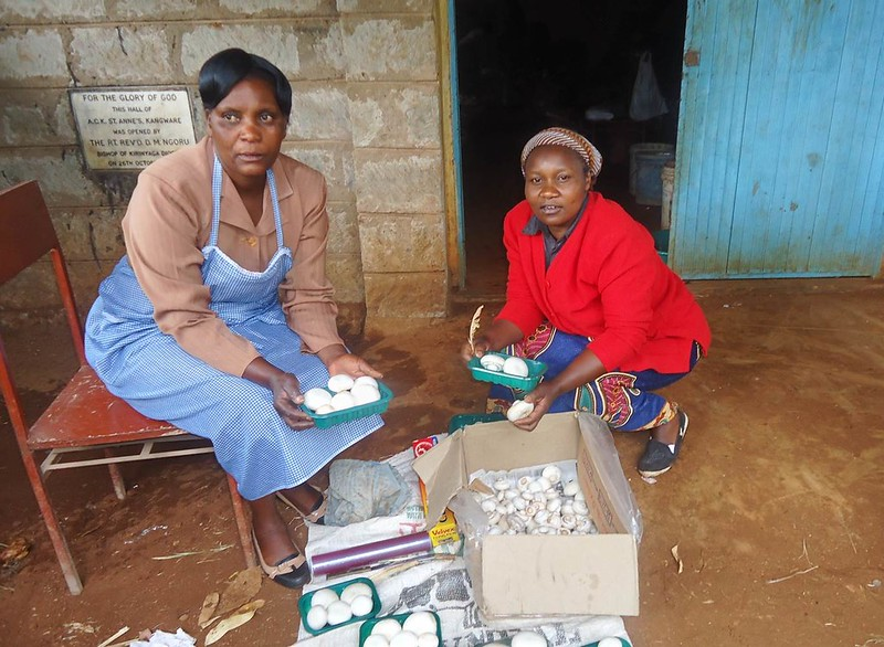 Edith and Elizabeth from Kangware church packing mushrooms