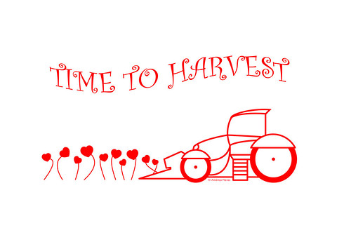 Time to harvest by americoneves