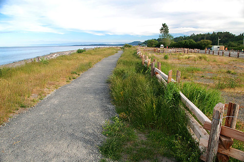 Island View Beach Park, Saanichton, Saanich Peninsula, Victoria, Vancouver Island, British Columbia, Canada