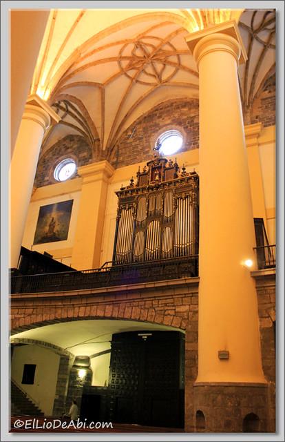 16 Tolosa
