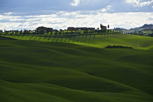 Green Waves in the Crete Senesi