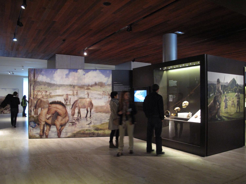 museo arqueologico nacional_man_exposion_arturo asensio moruno_ilustracion