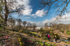 View of the green houses of Wisley