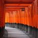 Fushimi Inari Taisha by russ david