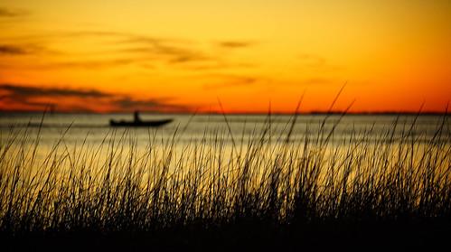 winter sunset sky orange usa seascape color beach nature water beautiful beauty silhouette yellow photography boat solitude dof florida bokeh dusk explore shore epic seagrass goldenhour gulfcoast 70200mmf28 firstexplore sonyalpha stmarkswildliferefuge apalacheebay 1stexplore sonyslta99 kimmienflorida explorejan302015