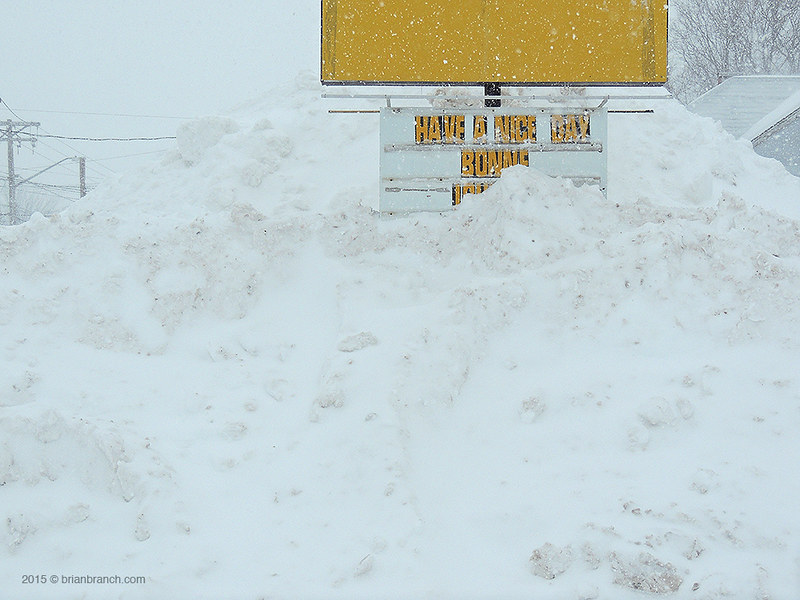 DSCN9565_snow copy
