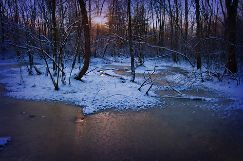 winter sunset snow cold woods massachusetts newengland orton ipswichriver northreading