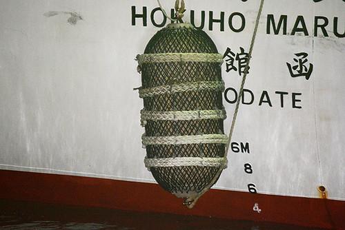 Hokuho Maru fender