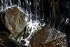 Falyn McQuarrie_water on rocks