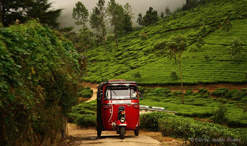SriLanka_Kandy