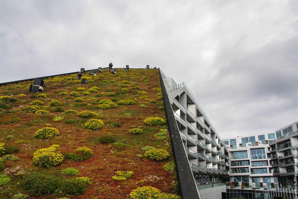 Зачем делать крыши зелёными