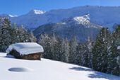 Winterstimmung in Südtirol. Foto: Günther Härter.