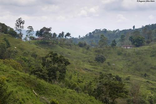 colombia florida ciudad paisaje sitio casadecampo valledelcauca paisajerural caseteja