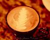 Northend Coffee II