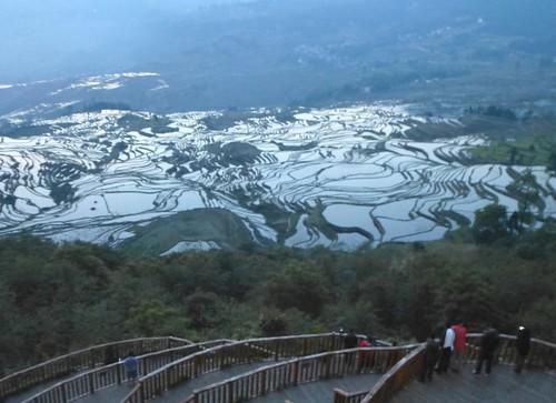 Yunnan13-Yuanyang 1-Duoyishu (2)