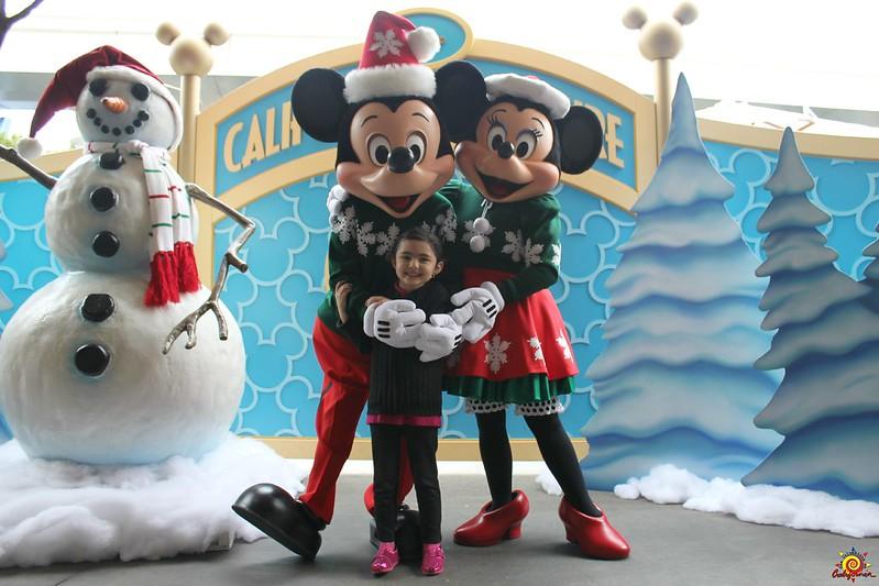 Disneyland Navidad