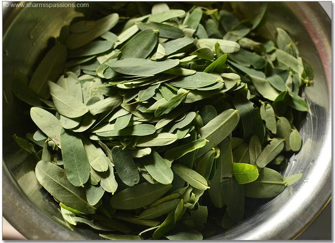 Agathi Keerai Leaves