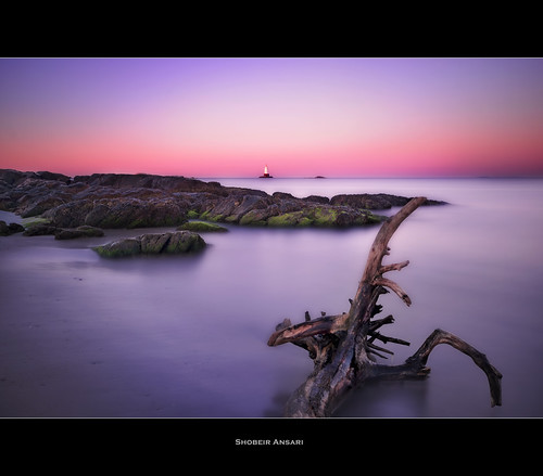 ocean longexposure ri lighthouse seascape tree rock sunrise branch rhodeisland littlecompton sakonnetpoint nd110 shobeiransari sakonnetlighthouse sakonnetlight sakonnetlightstation