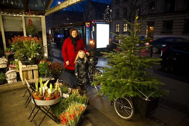 Heidis Christmas Tree_2