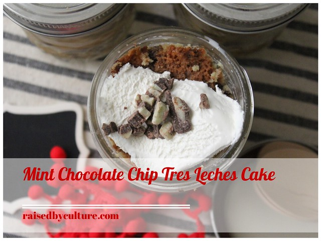 Mint Chocolate Chip Tres Leches Cake