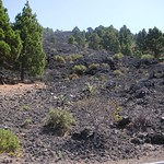 Lavafeld auf La Palma