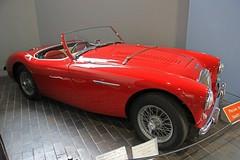 race car, automobile, vehicle, austin-healey 100, classic car, vintage car, land vehicle, sports car,