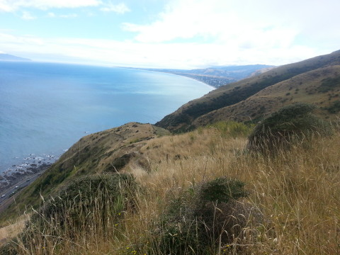 View to Paekakariki