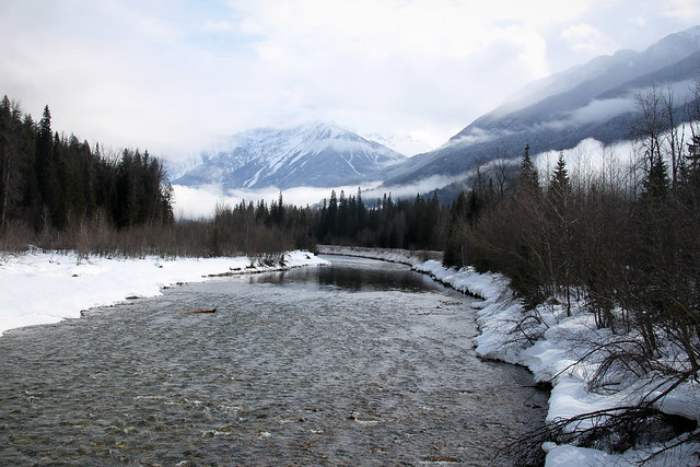 River near Revelstoke