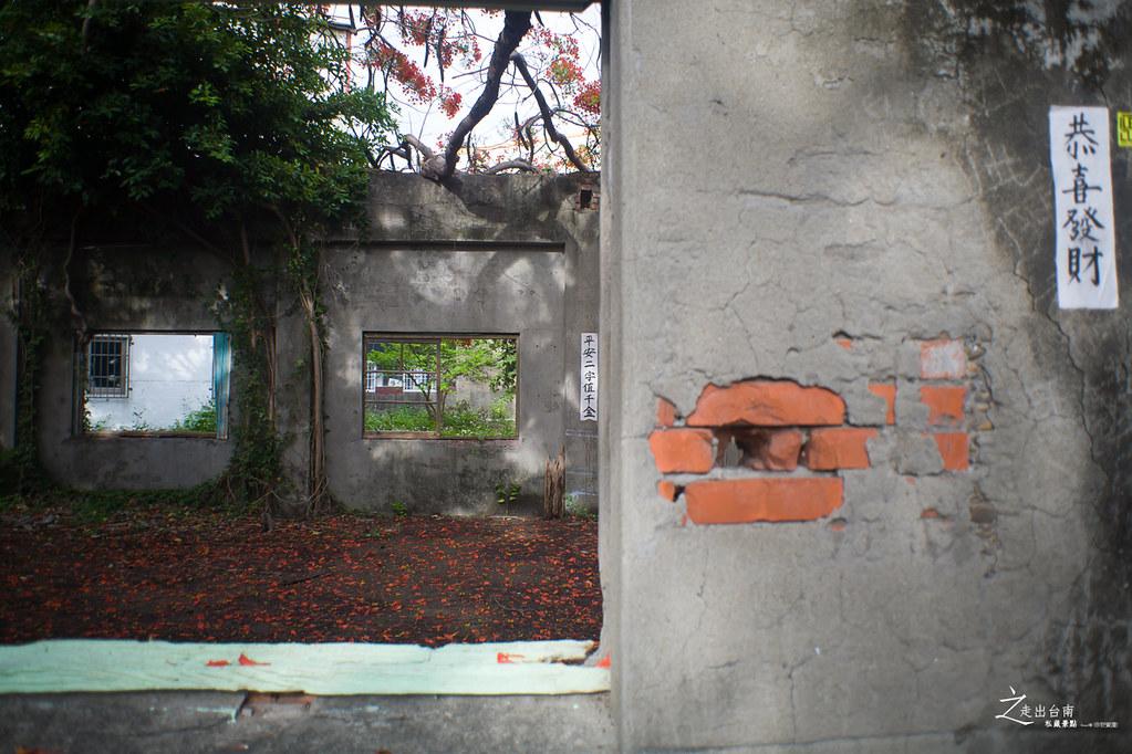 台南私藏景點--柑阿蜜社鳳凰花 (13)