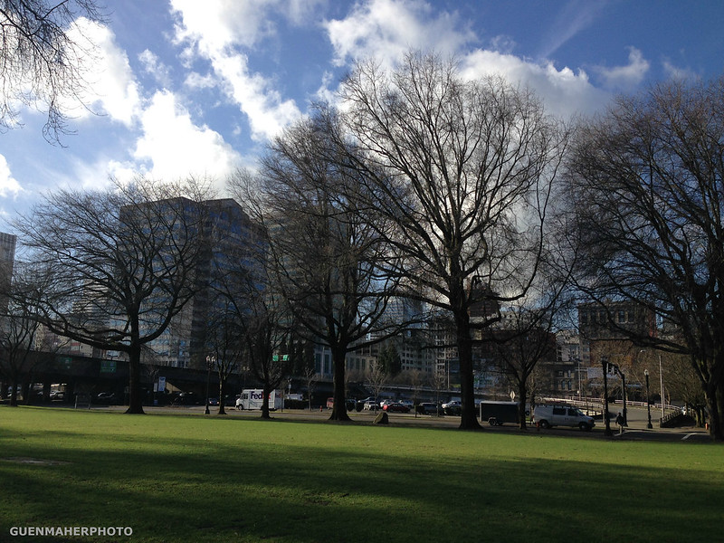 Sunny Winter at Downtown Portland