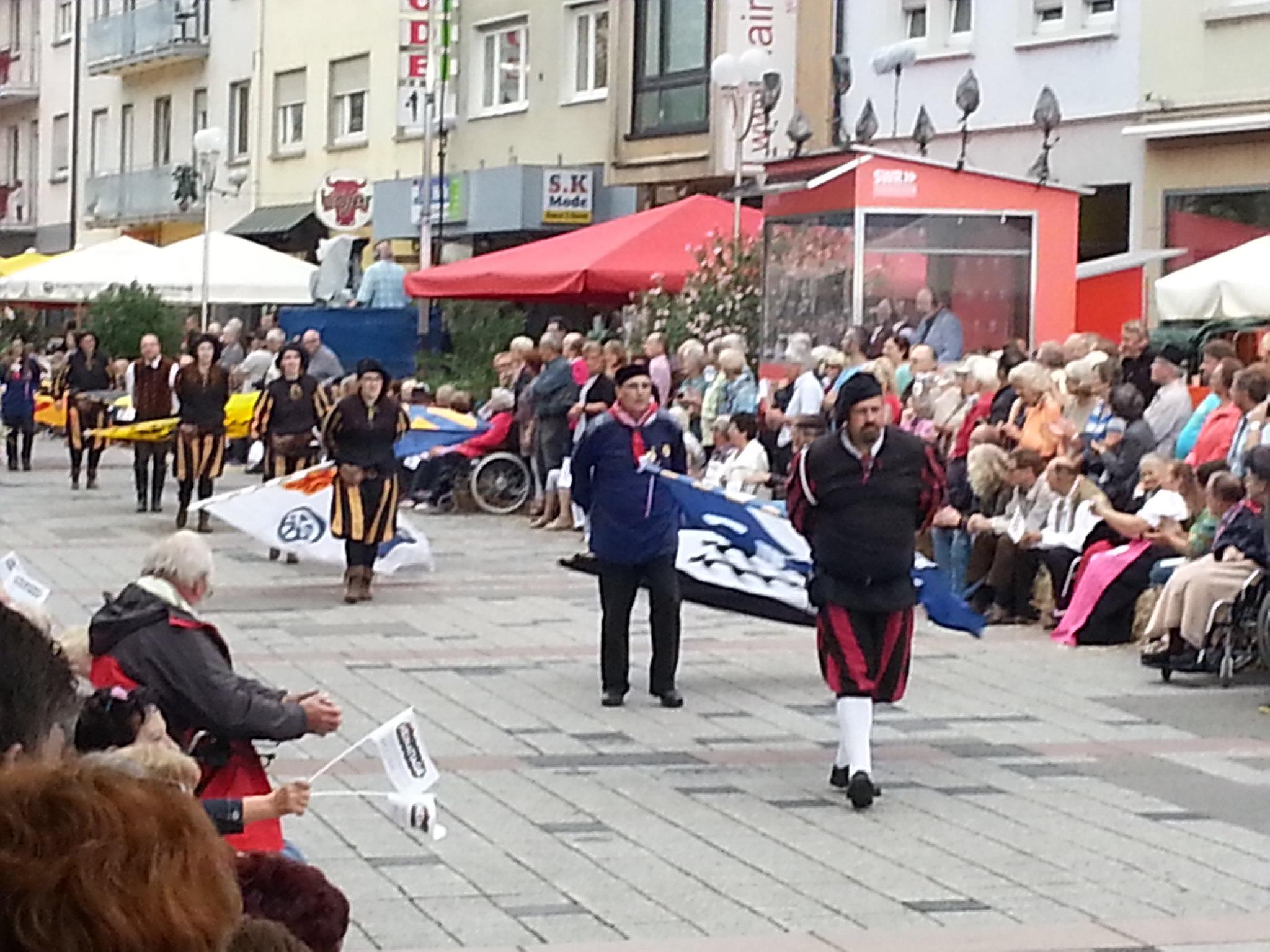 Landesfestumzug Bruchsal 2015 (5)