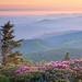 Grassy Ridge Sunrise, Roan Mountain North Carolina by jason_frye