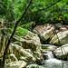 Trail to Ba Ho Waterfalls