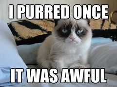 Grumpy cat it was awful