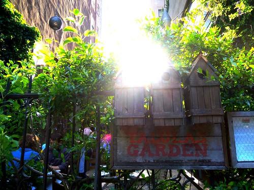 talulas garden