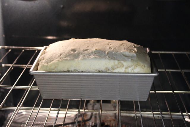 Gluten Free Bread Rising in Oven