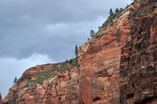 Zion National Park #14
