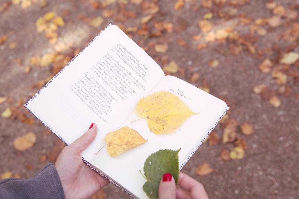 past&pleasant Herbst-8.jpg