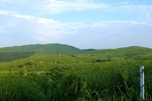 japan geotagged scenery mine 日本 yamaguchi 風景 akiyoshi 山口県 akiyoshidai 秋吉台 美祢市 景勝地 geo:lat=3423362472649781 geo:lon=1313086244038641 秋吉町