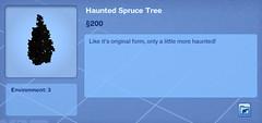 Haunted Spruce Tree