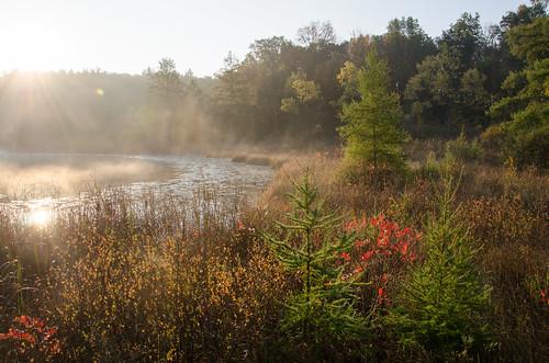 morning autumn mist fall sunrise fallcolor michigan sunburst morningmist michiganstateparks pickerellake potawatomitrail pinckneystaterecreationarea