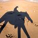 horseback shadow