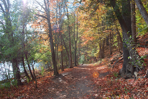 The trail around the lake