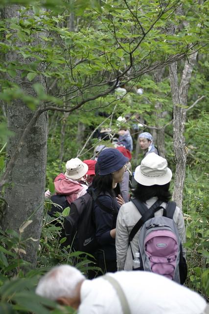 細い道が続いた,聖山から高岳への縦走.