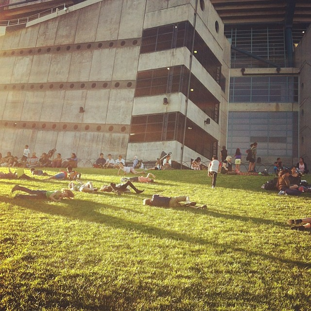 Kids everywhere.... Rolling down the slopes outside the mcg!